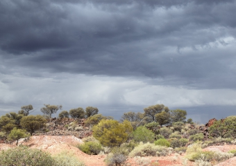 north_of_laverton_DSC_0512