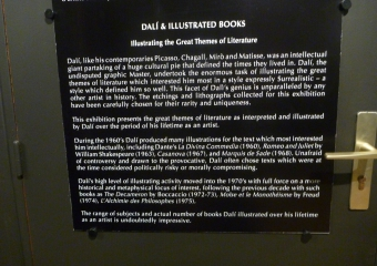 Dali-museum_smaller_P1010862
