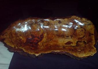 2011-Tasmania-wood-carvings-mine_DSC02449