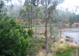 2011-Tasmania-z_misc_P1000833