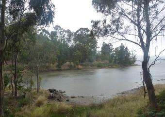 2011-Tasmania-z_misc_P1000839