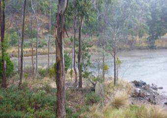 2011-Tasmania-z_misc_P1000842