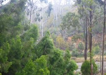 2011-Tasmania-z_misc_P1000843
