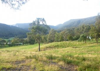 2011-Tasmania-z_misc_P1000849