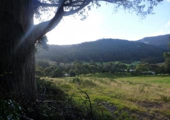 2011-Tasmania-z_misc_P1000850