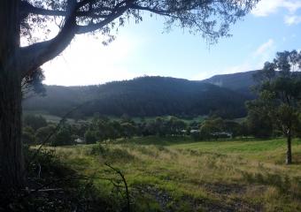 2011-Tasmania-z_misc_P1000851