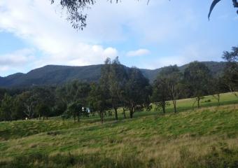 2011-Tasmania-z_misc_P1000853