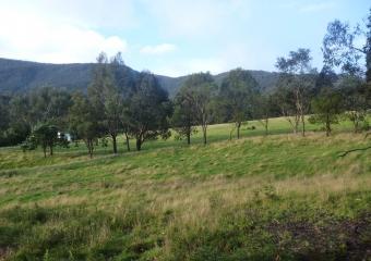2011-Tasmania-z_misc_P1000854