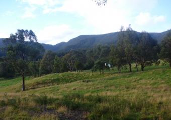 2011-Tasmania-z_misc_P1000856