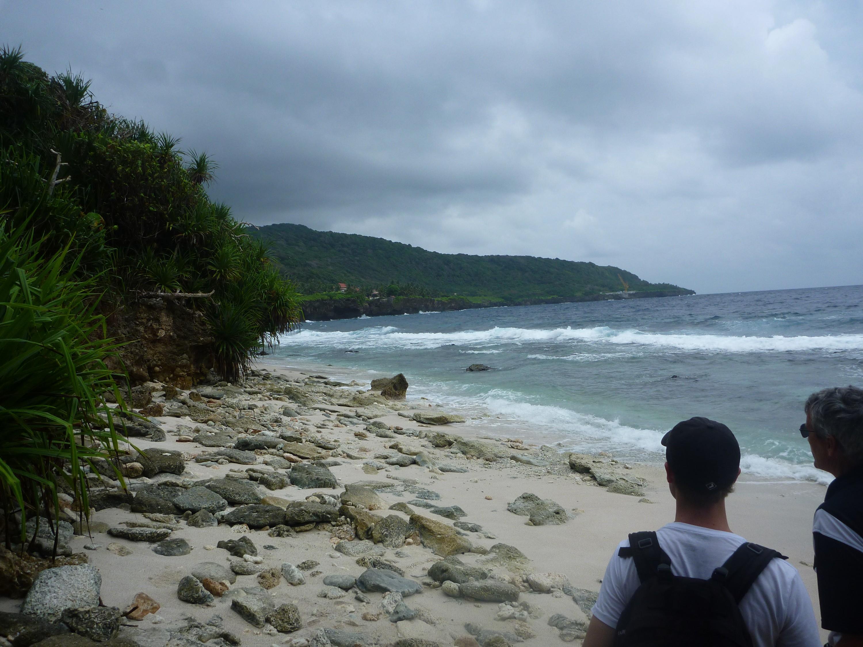 2011-05 Christmas Island – Homunculoid