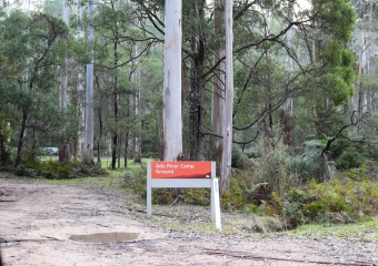 Vic-Trip_Ada-River-campsite_DSC_0835