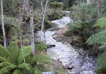 Vic-Trip_Ada-River-campsite_DSC_0841