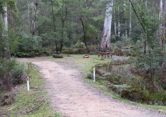 Vic-Trip_Ada-River-campsite_DSC_0844