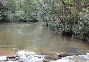 Vic-Trip_Combienbar-River-1-camp_DSC_0605