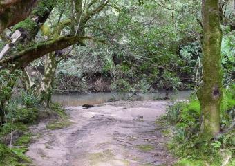 Vic-Trip_Combienbar-River-4-campsite_DSC_0555
