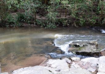 Vic-Trip_Combienbar-River_DSC_0505
