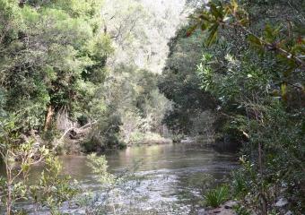 Vic-Trip_Combienbar-River_DSC_0507
