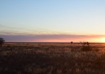 Mundrabilla_DSC_0209-sunset